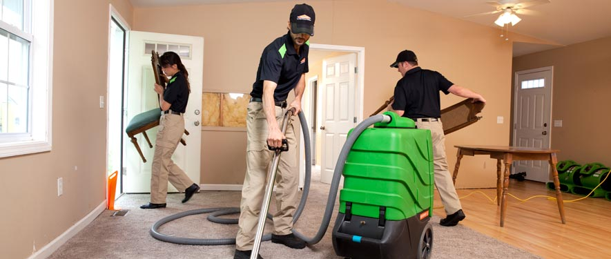 Bristol, CT cleaning services
